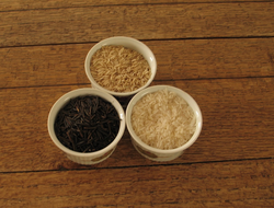 Uncooked wild rice, brown and white rice