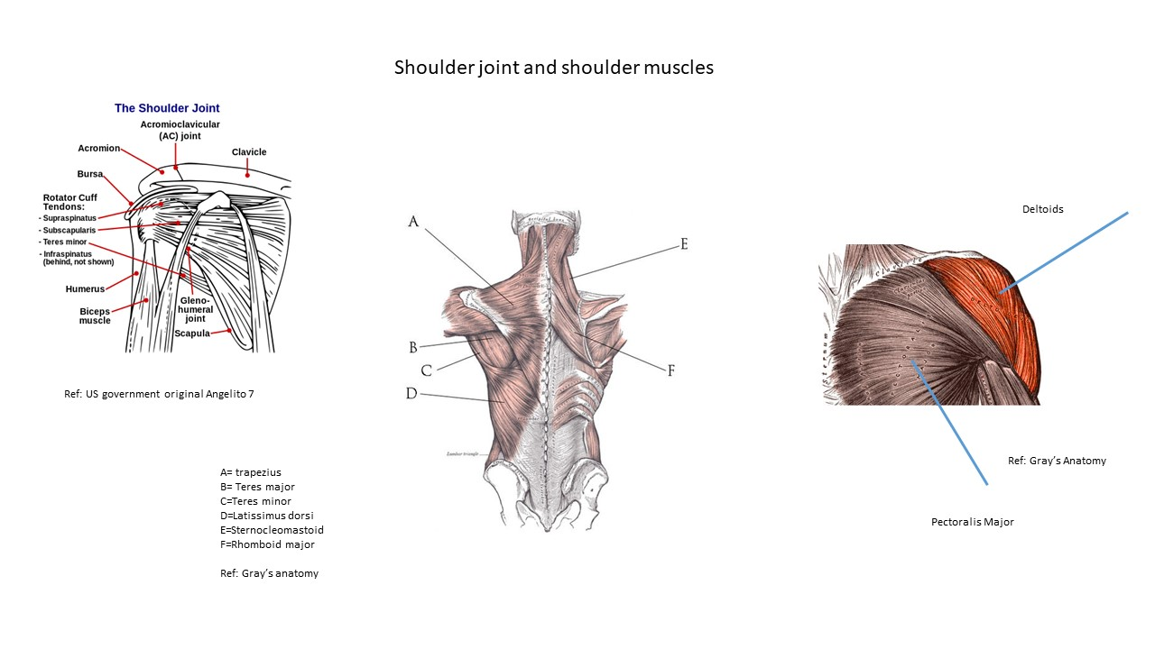 Shoulders Exercises To Do At Home