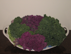 Kale and other vegetables contain antioxidants