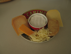 Cheese is a fermented food