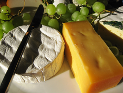 Cheese: a popular calcium containing food