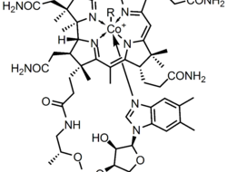 The chemical structure of cobalamin