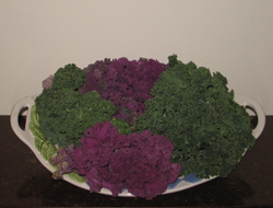 Kale is an excellent source of vitamin K