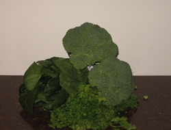 Dark green leafy vegetables are good sources of antioxidants