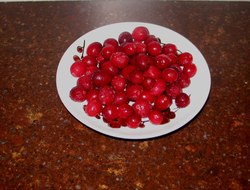 1 cup of fresh cranberries